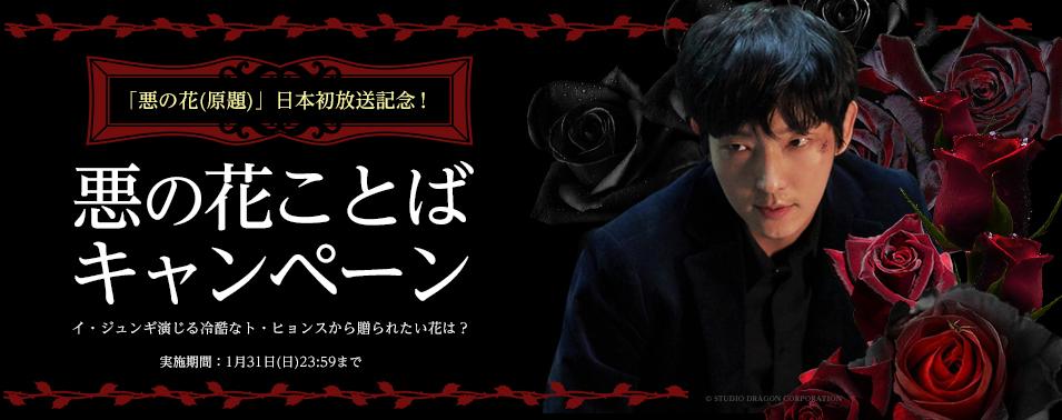 「悪の花(原題)」日本初放送記念!悪の花ことばキャンペーン実施中